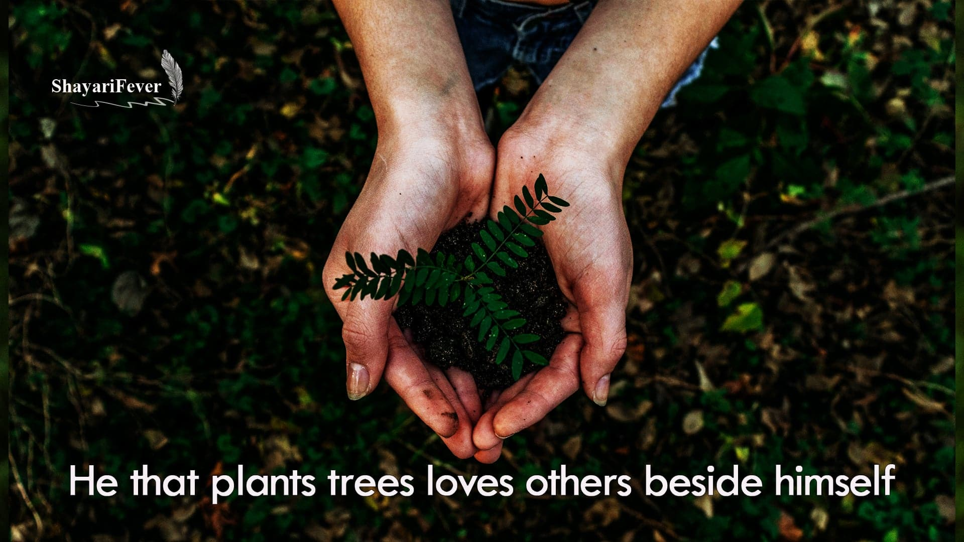 Save Earth Quotes