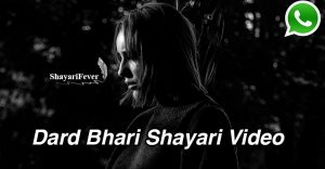 2019 ki shayari video download